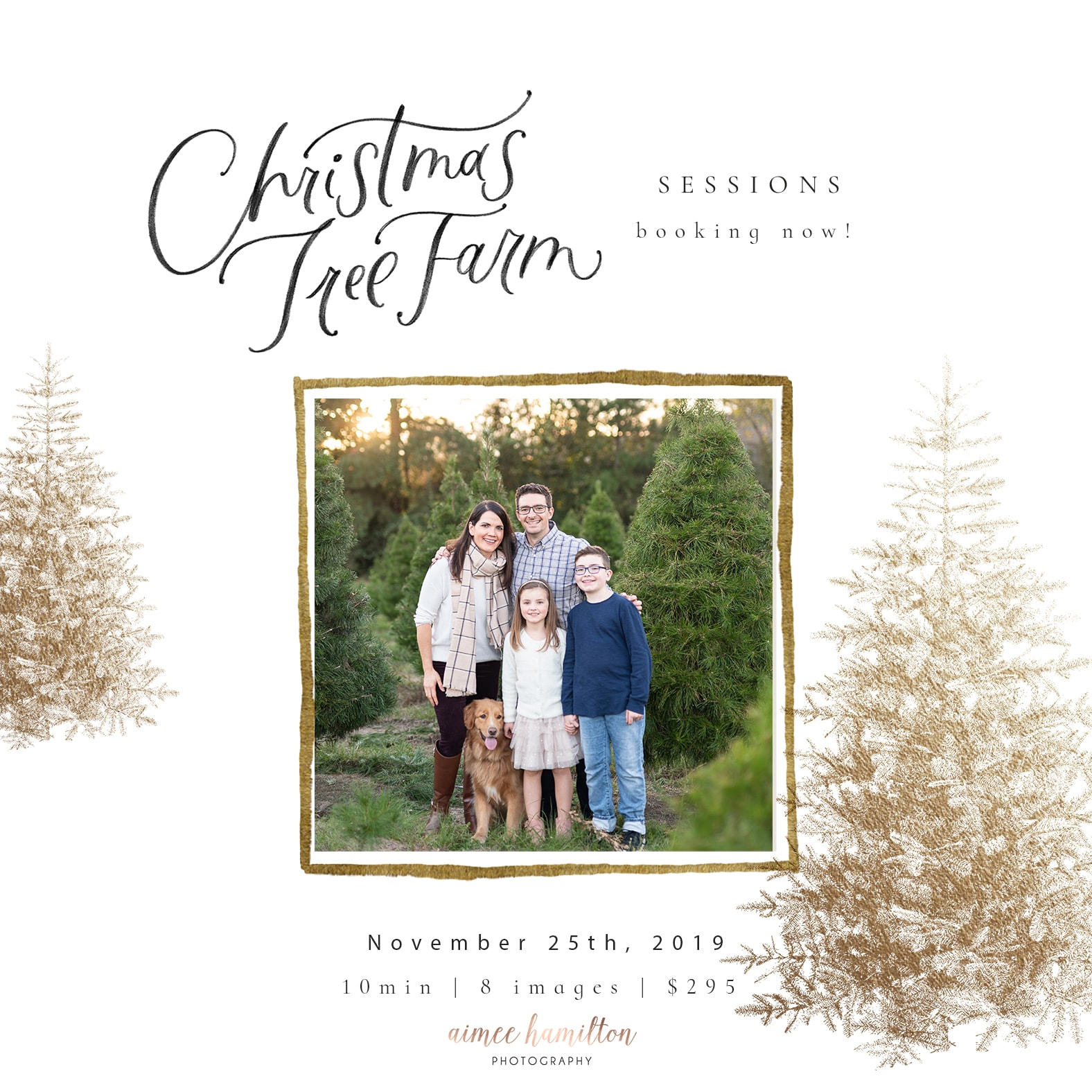 Houston Christmas Tree Farm Mini Session