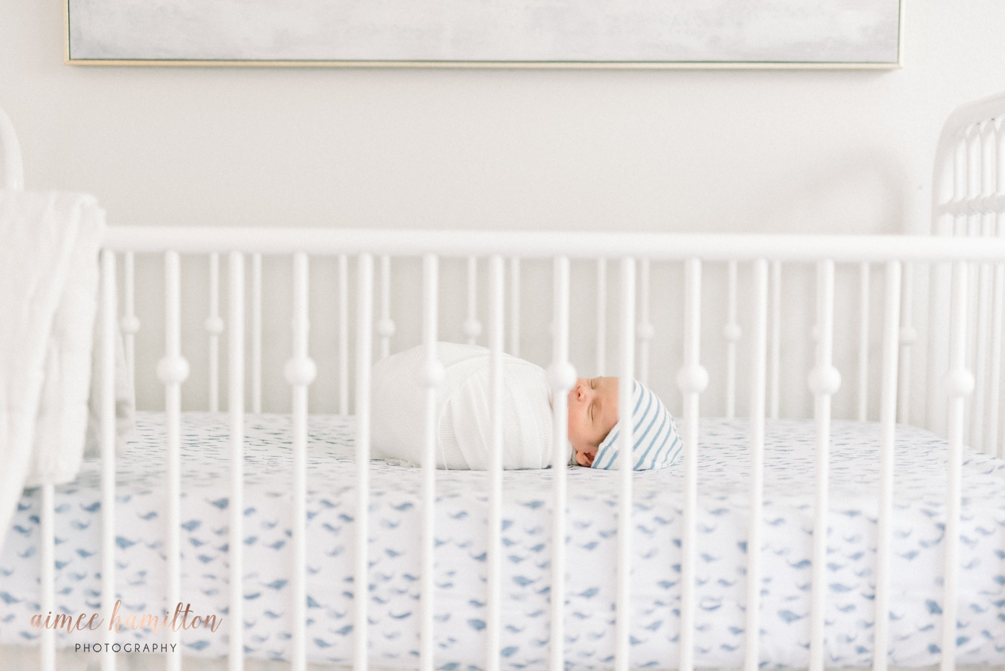 Houston Lifestyle Newborn Photographer