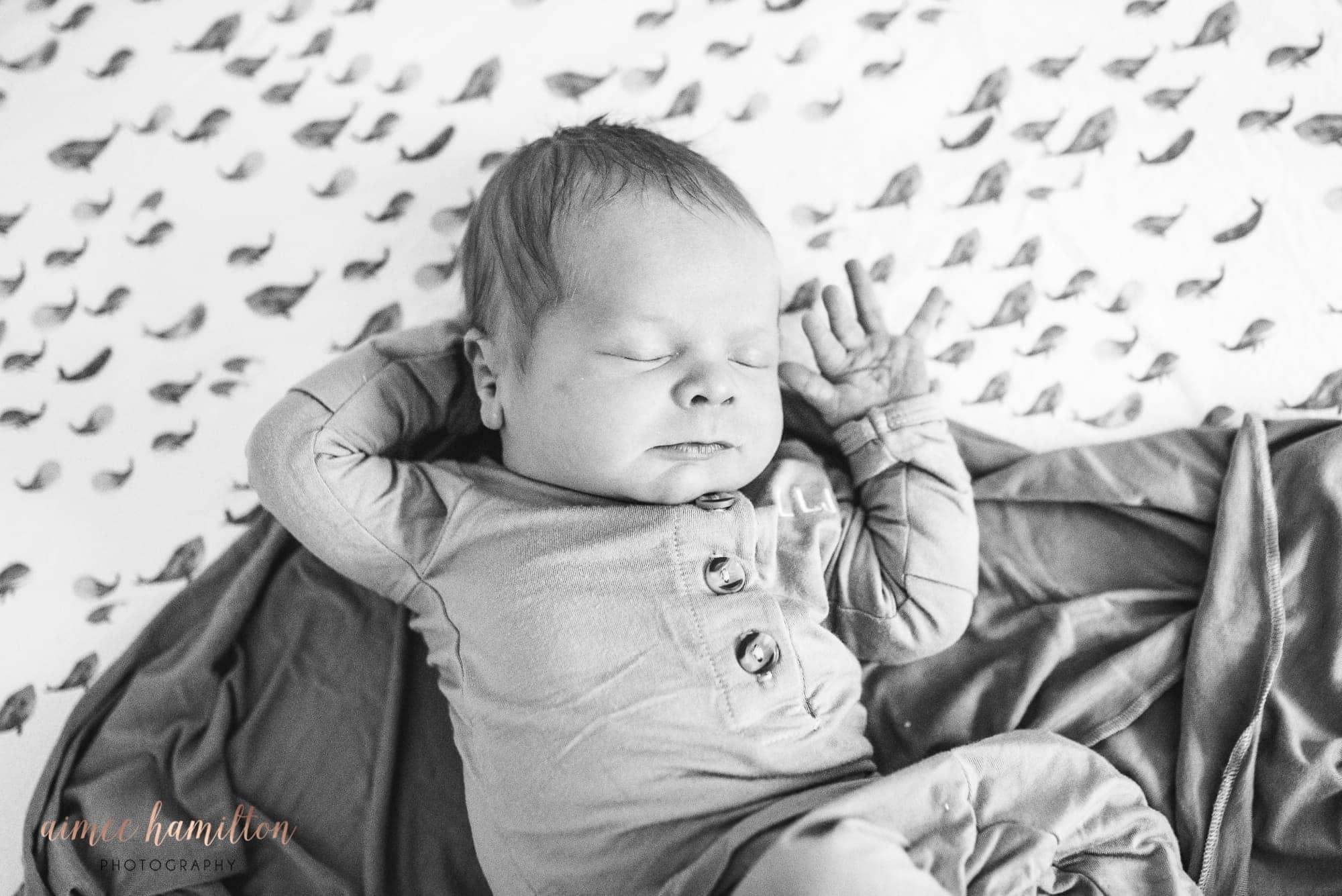 Prosper Lifestyle Newborn Photographer
