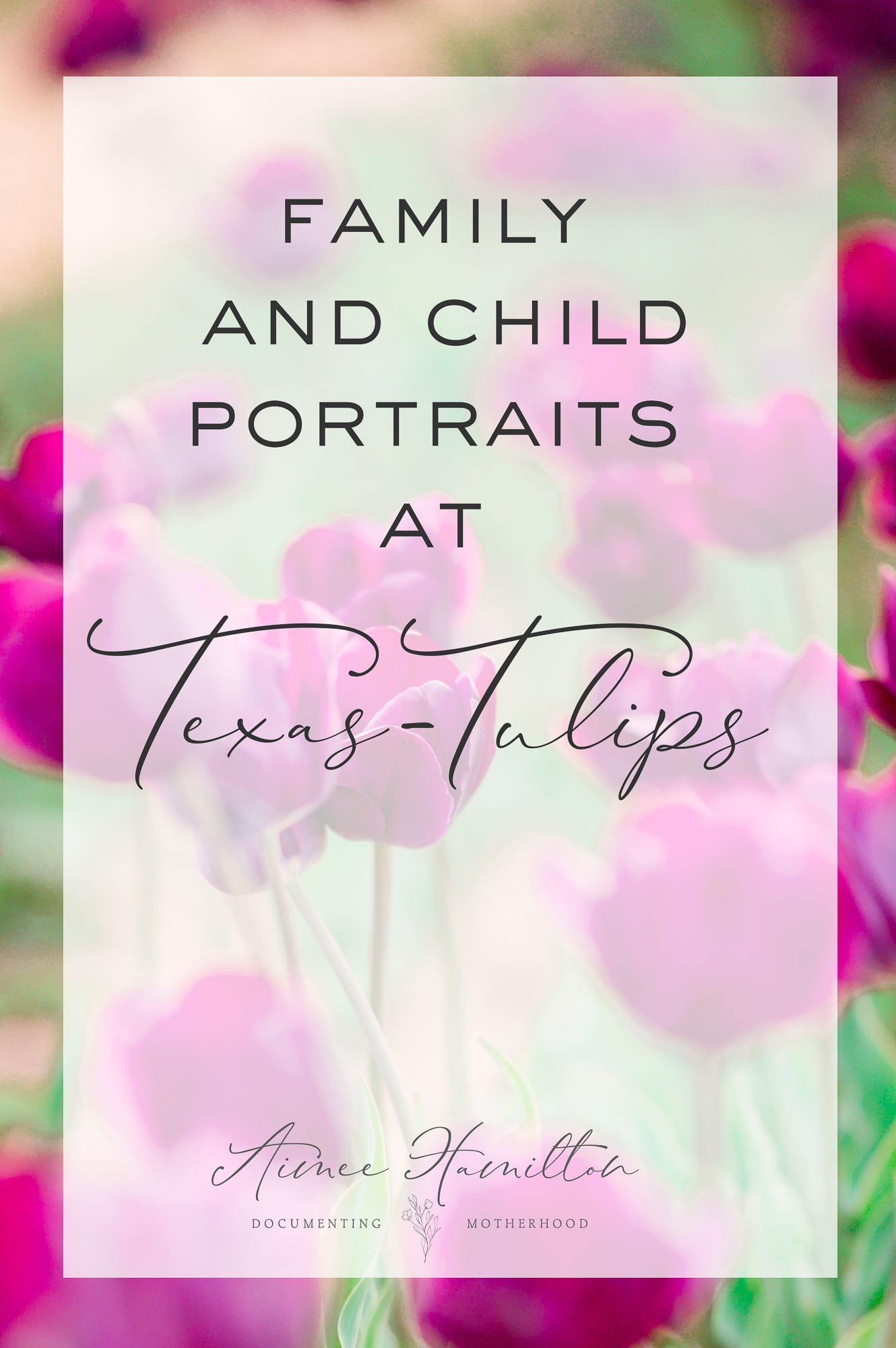 Family Photography at Texas Tulips in Dallas
