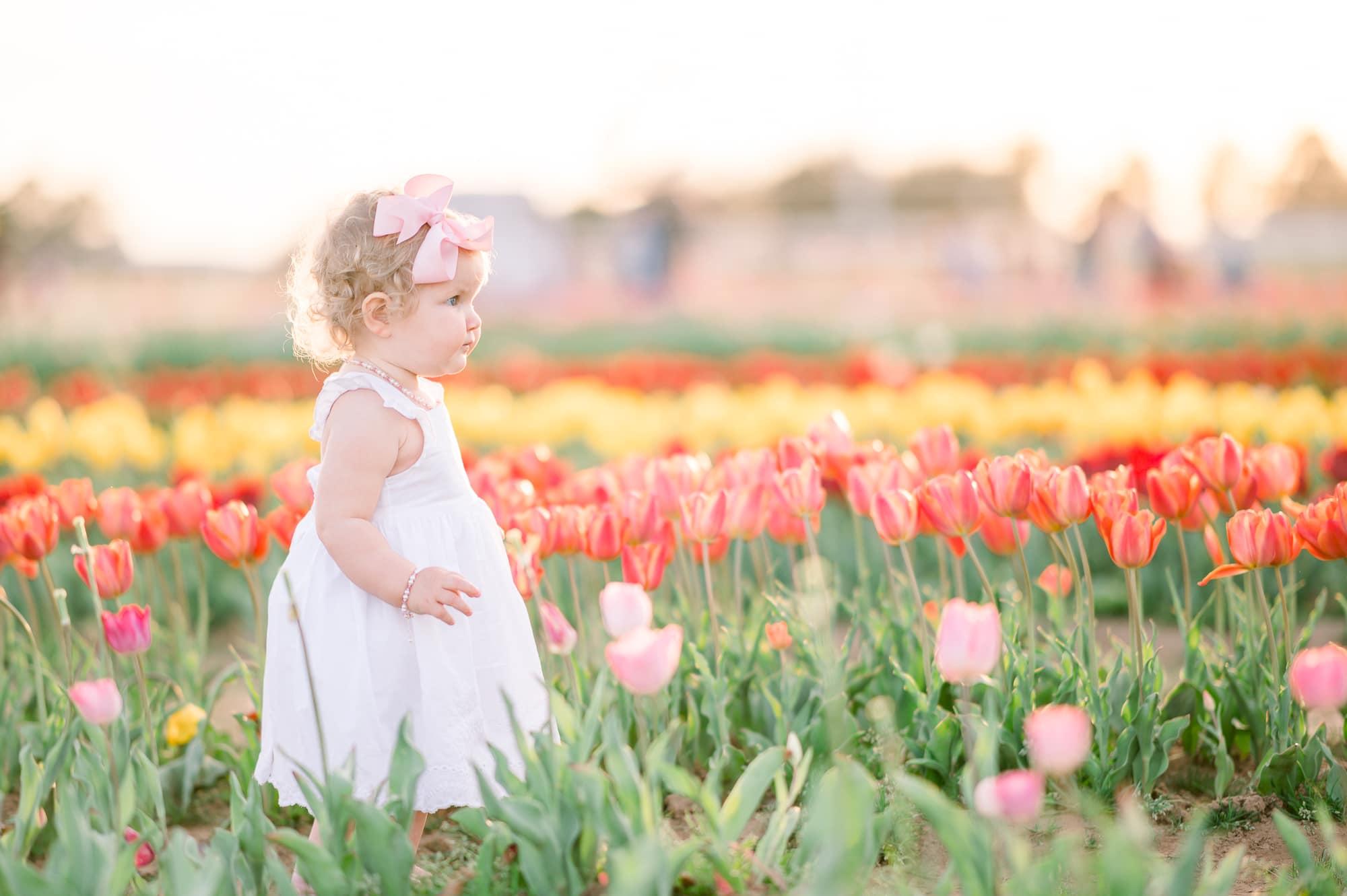Dallas Tulip Farm Baby Portraits