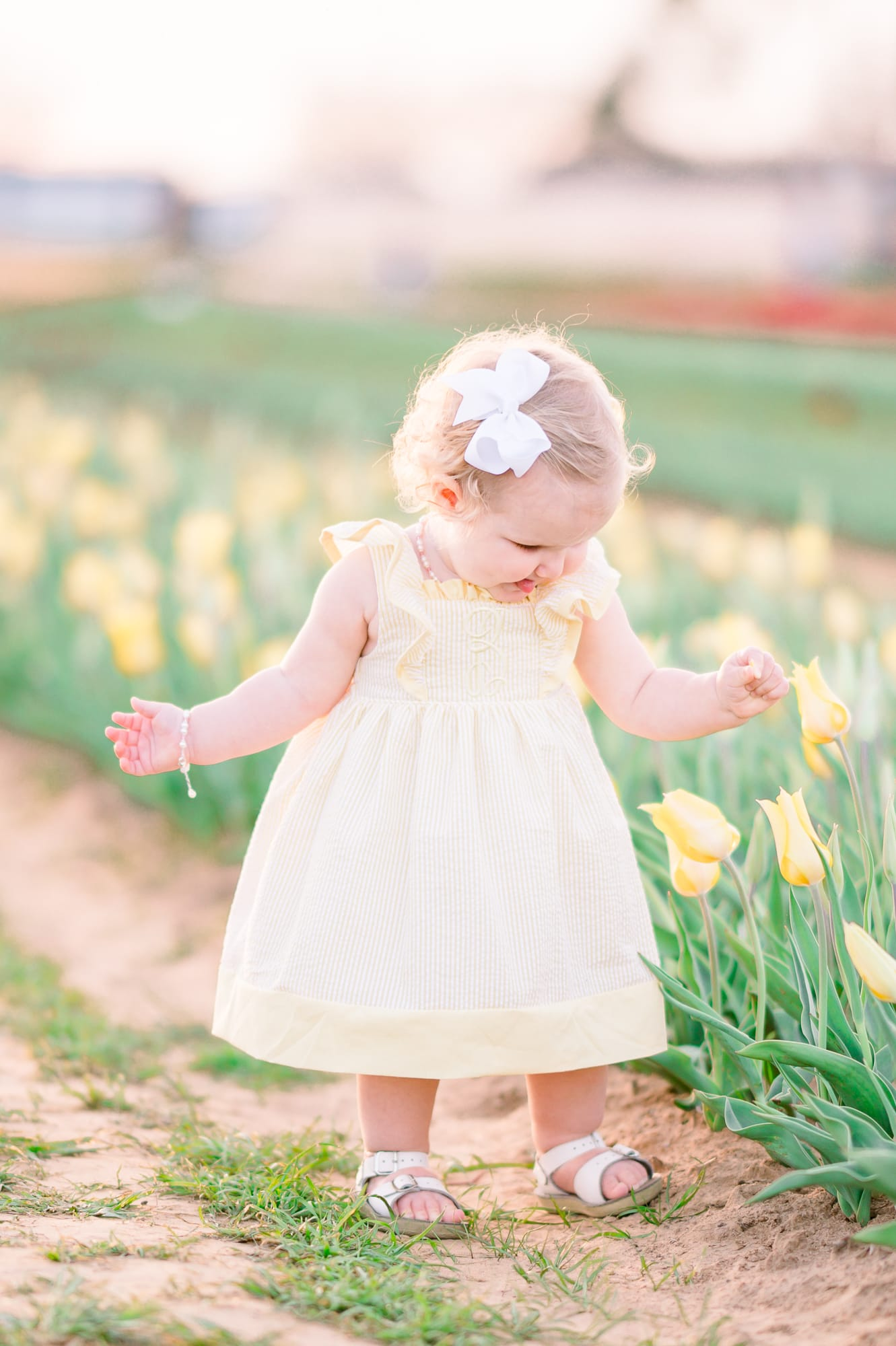 Baby girl in the Dallas tulips