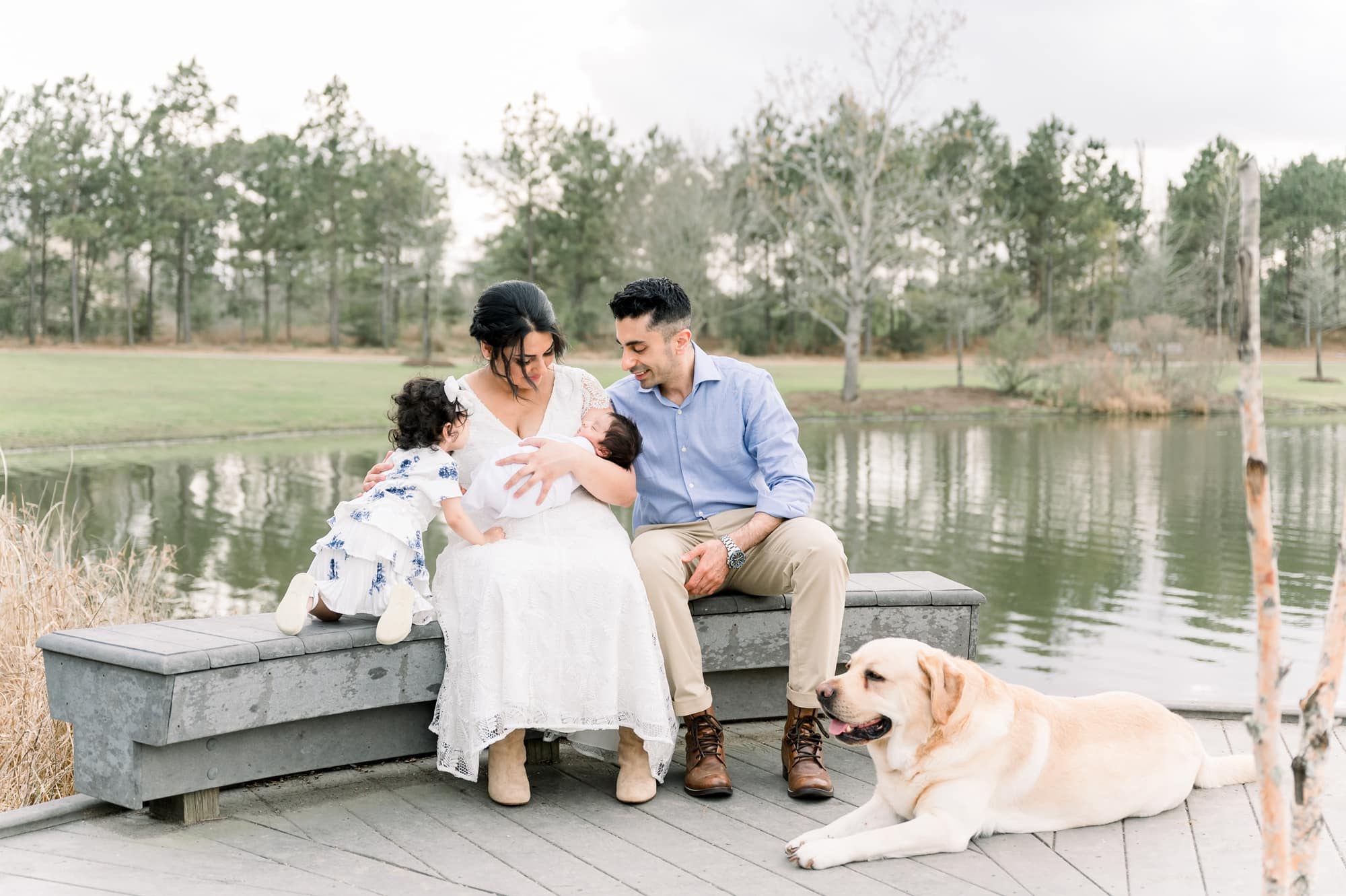 Sweet image of family sitting in park with newborn baby and family dog. Photo by Aimee Hamilton Photography.