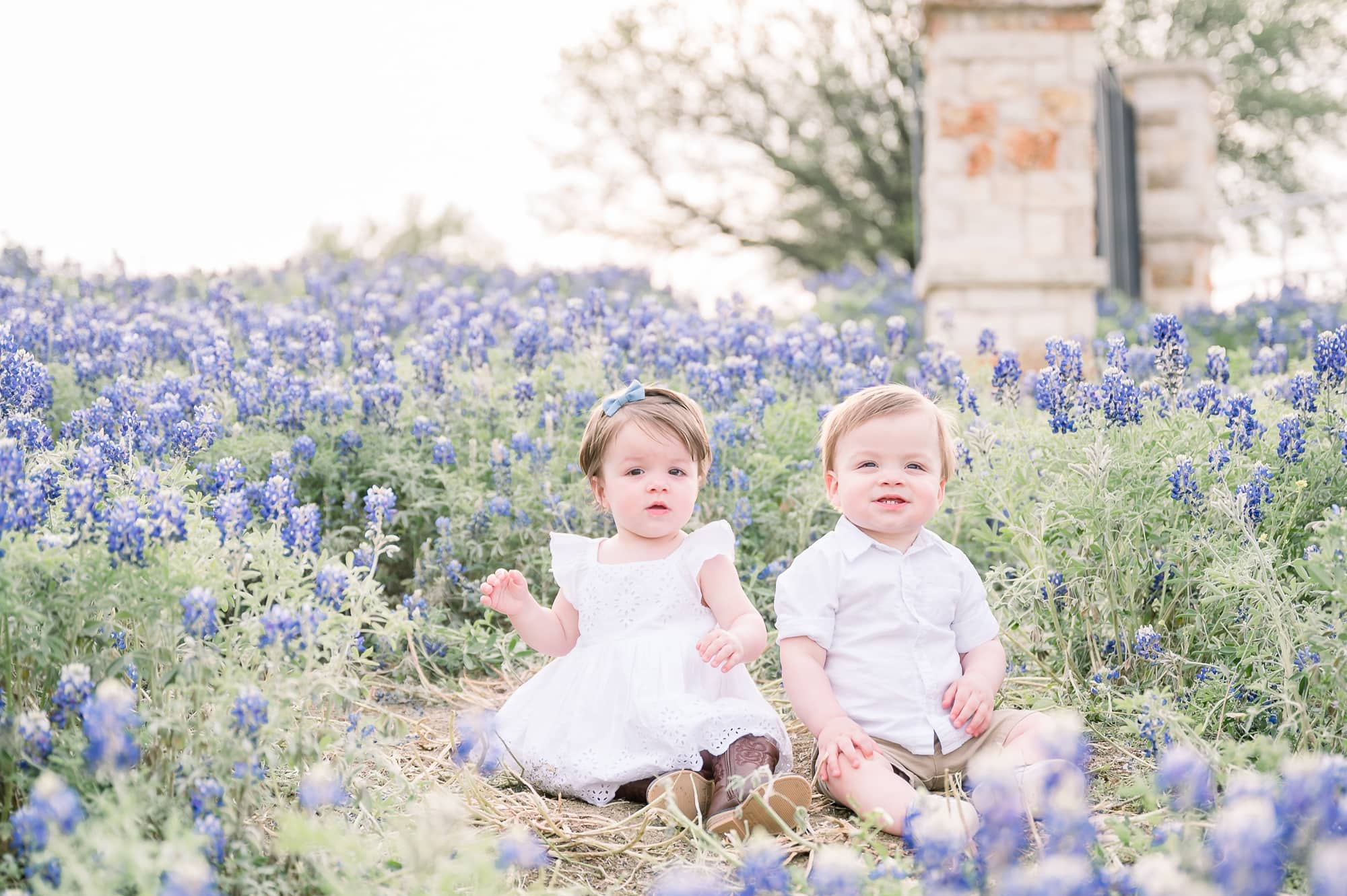 Twin girl and boy sitting in the middle of bluebonnet field in Texas. Photo by Aimee Hamilton Photography.