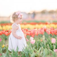 toddler in tulip field